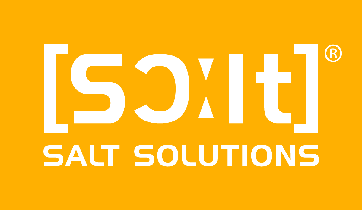 Logo der SALT Solutions AG